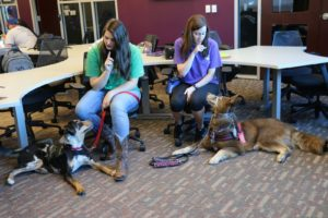 Alysan Marks and Anna Bobo, with their service dogs Hamilton and Sky, practice the command
